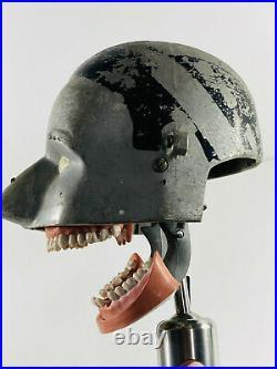 MEGA RARE 1930s AM Manikin Painted Dental Phantom Head 81 vintage