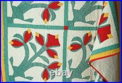RARE Vintage Amaryllis Red, Green & Cheddar Applique Antique Quilt VIBRANT
