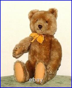 Rare Vintage 14 1951-3 Camel Original Mohair Steiff Teddy Bear ATB112312196