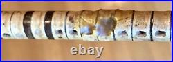 Rare Vintage Antique 19C Shark Vertebrae Walking Stick Cane Horn Handle Old 34L